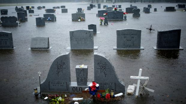 A cemetery covered in floodwaters in Lumberton, North Carolina. Photograph: Luke Sharrett/The New York Times.