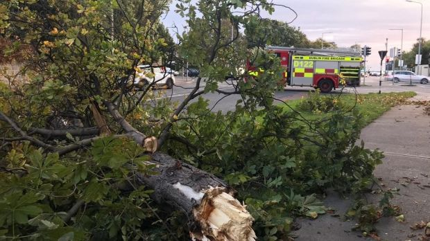 Firefighters from Dún Laoghaire attend the scene of a fallen tree on Wednesday morning. Photograph: Dublin Fire Brigade/Twitter