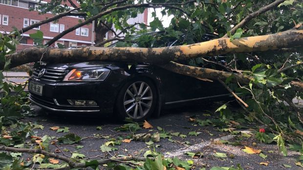 A fallen tree on a car at Cuff Street, Dublin during Storm Ali. Photograph: Daithí Walsh