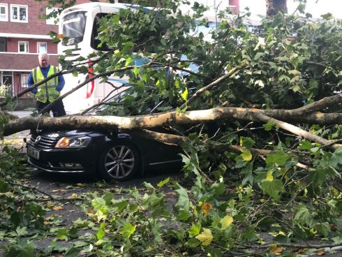 A fallen tree on a car at Cuff Street, during Storm Ali. Photograph: Daithi Walsh