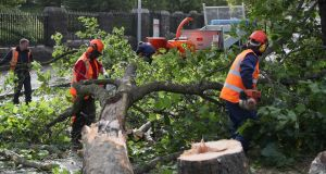 Workmen deal with a fallen tree on Finglass Road by Glasnevin Cemetary in  Dublin. Photograph: PA