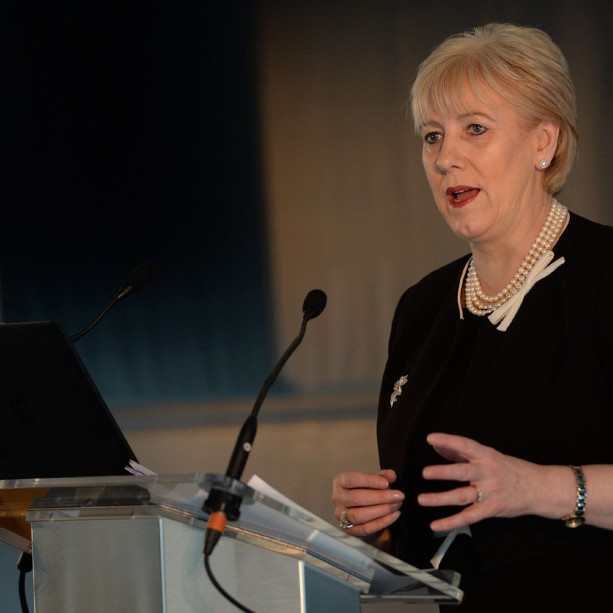 Businesses too slow in preparing for Brexit – Heather Humphreys