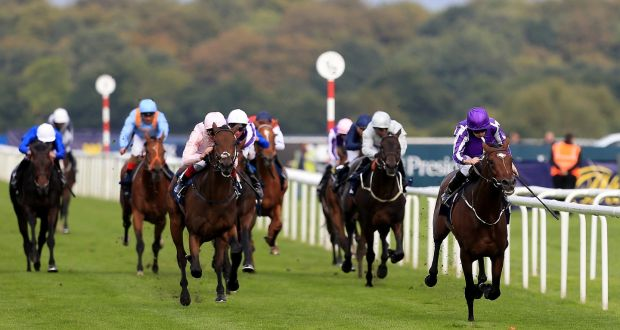 Kew Gardens best O'Brien's hope in Prix de l'Arc de Triomphe