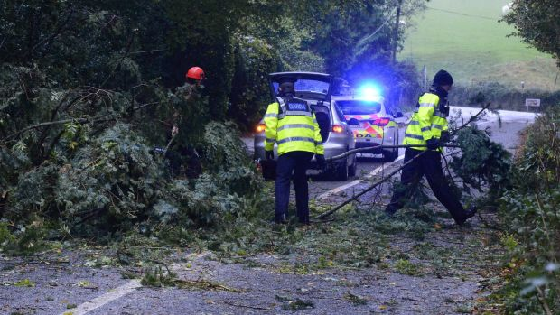 Gardaí clearing the road near Enniskerry from a fallen tree during storm Ophelia in October 2017. Photograph: Cyril Byrne/The Irish Times