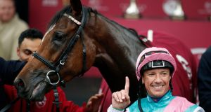 Enable will travel to America for the Breeders Cup turf. Photograph: Francois Mori/AP