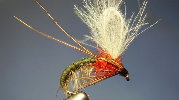 Hatching Sedge. Tied by Jimmy Tyrrell (irishflycraft@gmail.com).