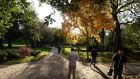Autumn light in Dublin's Merrion Square on Monday. Photograph: Dara Mac Dónaill
