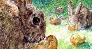 The estimated 13 million rabbits in Ireland cost the economy some €55 million annually. Illustration: Michael Viney