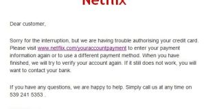 The bogus email attempts to get Netflix customers' credit card details.