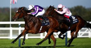 Ryan Moore rides Magical to win the Qipco British Champions Fillies & Mares Stakes at  Ascot. Photograph: Charlie Crowhurst/Getty Images