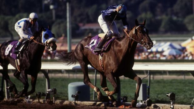 Arcangues on the final stretch of the 1993 Breeders' Cup Classic. At 133-1, he became the longest-odds horse to win in the history of the race. Photograph: JD Cuban/Getty Images