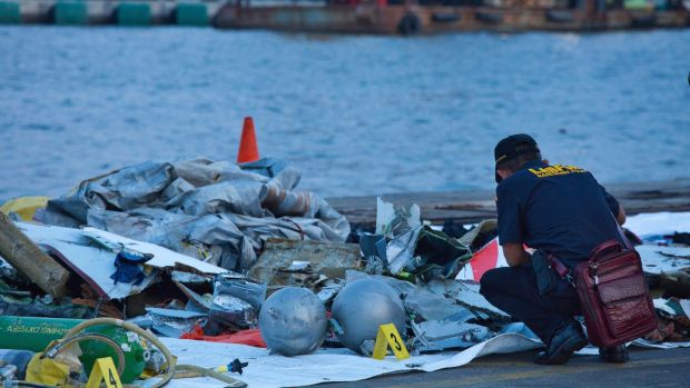 A forensic investigator looks through the remains of Lion Air flight JT 610 at the Tanjung Priok port. Photograph: Getty Images