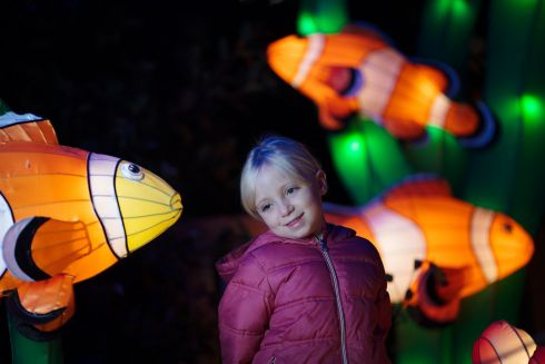 IN THE WILD: Beth Healy is pictured at a preview of this year's Wild Lights in Dublin Zoo.