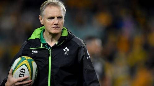 Joe Schmidt: I don't see him taking another Northern Hemisphere job