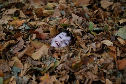 LEAVE ME BE: Alex Ward (8), from Kevin St, Dublin, enjoying the autumn leaves at St Stephen's Green in Dublin. Photograph: Nick Bradshaw/The Irish Times