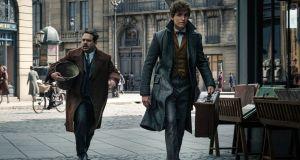 "For Eddie Redmayne's Newt Scamander, Atwood settled on a colour she calls ""dirty peacock blue"""