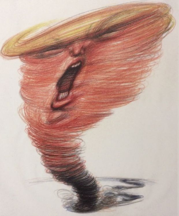 Image result for trump tornado cartoon