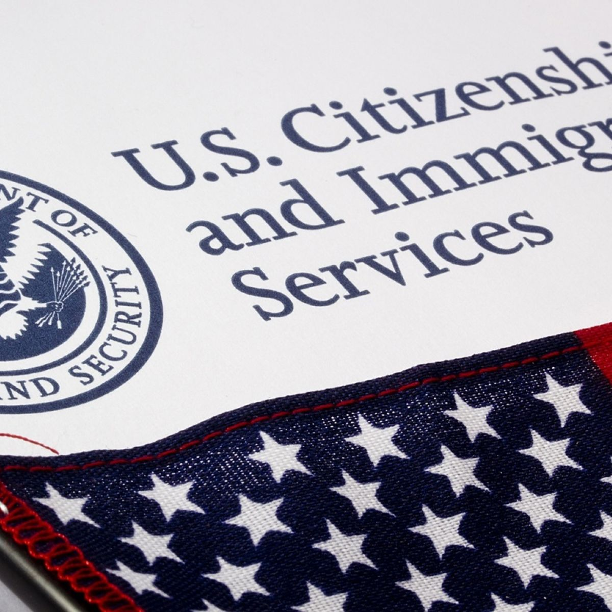 Why should Irish immigrants be treated better than others?\'