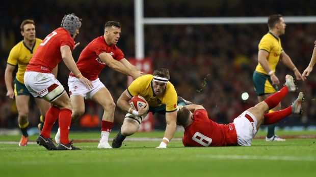 Izack Rodda of Australia is tackled by Ross Moriarty of Wales during the autumn international at the Principality Stadium in Cardiff. Photograph: Michael Steele/Getty Images