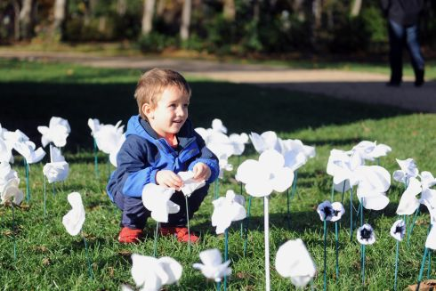 Jugo Czubaj (3), from Dublin, takes stock of a display of handmade white poppies in Merrion Square, Dublin. The display was organised by the Dublin Quaker Peace Committee for its commemoration of Armistice Day. Photograph: Aidan Crawley/The Irish Times
