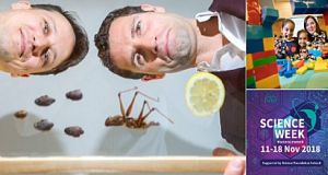 The weird and wonderful of Science Week: Jonathan McCrea, The Sugar Club, Dubland and others on show this week.