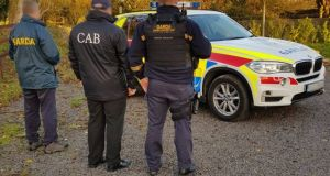 More than 80 gardaí and Criminal Assets Bureau officers searched properties on Tuesday linked to a gang suspected of involvement in rural crime.