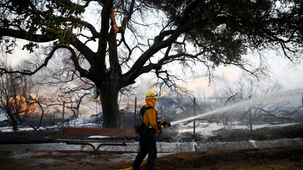 A firefighter battles the Peak Fire in Simi Valley, California. Photograph: Eric Thayer/Reuters