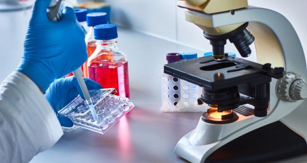 Ulster University scientists at the forefront of battle