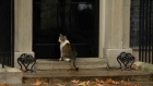 Larry the Downing Street cat helped out by police officer