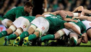 Ireland capped off a stellar year with a Guinness Series win over the All Blacks on Saturday but can they translate it into World Cup success? Photo: Billy Stickland/Inpho