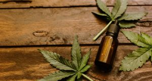 CBD: drug or foodstuff? Photograph: Getty Images