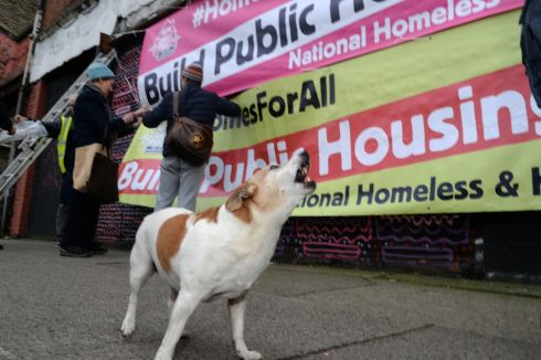 BARKING PROTEST: Fr Peters Mc Verry's pet dog, Tiny, is seen at the launch of the National Homeless and Housing Coalition demonstration. Photograph: Cyril Byrne/The Irish Times