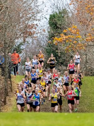 RUNNING PACK: A view of the senior women's race at the 2018 Irish Life Health National Senior Cross Country Championships. Photograph: Bryan Keane/INPHO