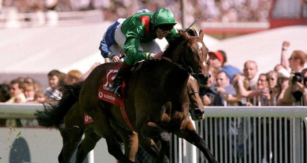 Dual Derby and Arc hero Sinndar dies aged 21