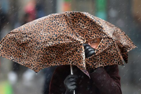YOU CANNOT HIDE: Peeping out at the heavy weather during rain in Dublin city ahead of the arrival of Storm Diana. Photograph: Dara Mac Donaill/The Irish Times