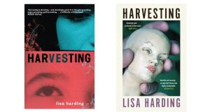 Second harvest: designer Anna Morrison's two versions of Harvesting