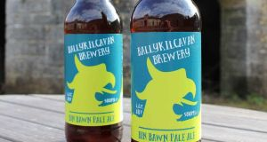 Ballykilcavan's Bin Bawn Pale Ale is a solid, well-made pale ale at 4.6 per cent with a crisp finish, a good malty backbone and a light body