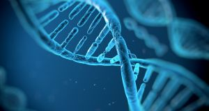 DNA results could be used for denial of health insurance coverage, for example. Photograph: iStock