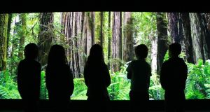 Children taking part in the Cool Planet Experience on the grounds of Powerscourt House and Gardens, Co Wicklow