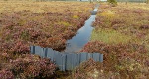 Reversing the flow: plastic dams inserted by Coillte in drains on Aghrane bog in Co Galway. They rewet the peatland, and restore its capacity to capture and store carbon. Photograph: John Conaghan