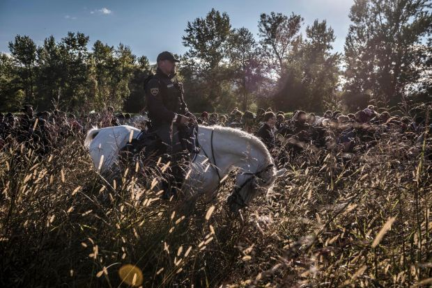 Police on horseback in Dobova, Slovenia, escort hundreds of migrants who have crossed the border from Croatia on October 20th, 2015 Photograph: Sergey Ponomarev,