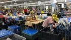 Disney's Ariel dolls: the Wah Tung factory in Heyuan, where staff said they worked 175 hours of overtime in one month. Photograph: China Labor Watch