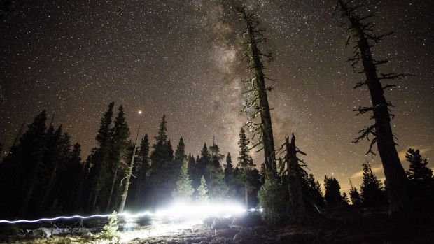 In this long-exposure photograph, Courtney Dauwalter passes Mile 163 of the Tahoe 200 ultramarathon, in El Dorado National Forest in California. Photograph: Max Whittaker/The New York Times