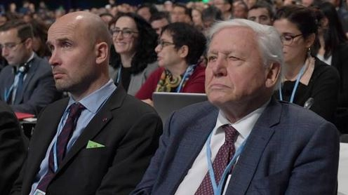 Sir David Attenborough ay COP24