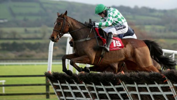 Tornado Flyer made a successful debut over hurdles at Punchestown. Photograph: Laszlo Geczo/Inpho