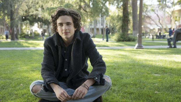 Timothée Chalamet who stars opposite Steve Carell in Beautiful Boy