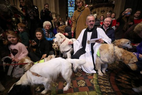 SERVICE DOGS: Dean of Christ Church Dermot Dunne officiates during the annual Peata Therapy Dog Carol Service at Christ Church Cathedral in Dublin. Photograph: Niall Carson/PA Wire
