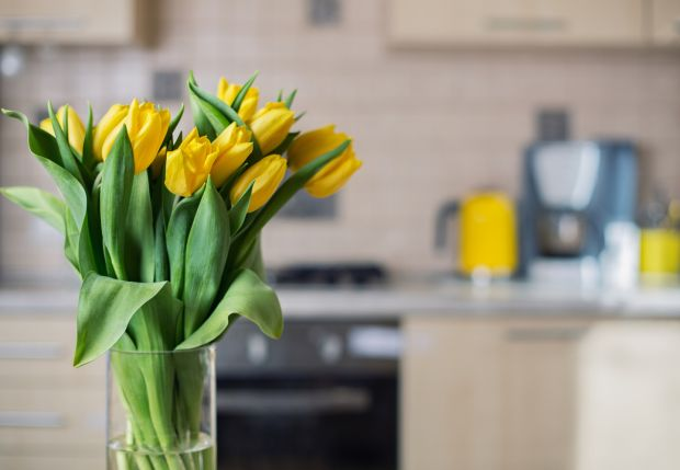 Orla Kiely, designer: 'A Dutch florist friend says a big bunch of yellow tulips are the best way to brighten up January. I get the same level of pleasure from a big yellow skip'