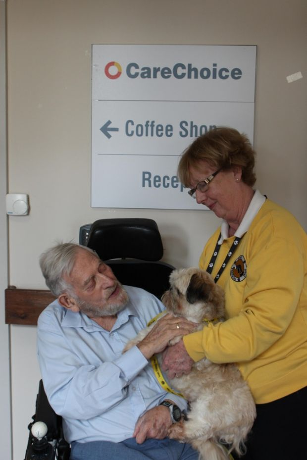 George Bannister, with Bernie Ladd from Irish Therapy Dogs, and Elton.