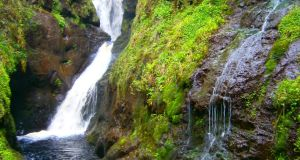 Walk for the Weekend: Glenariff, Co Antrim
